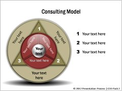 Consulting Models