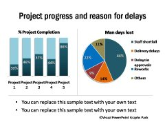 Project Progess Percentage and Reasons for Delays