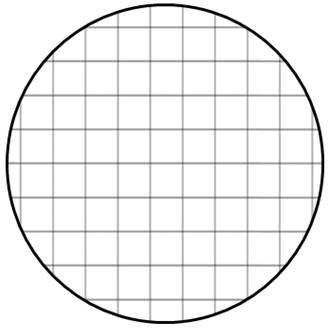 Grid Fill Shape