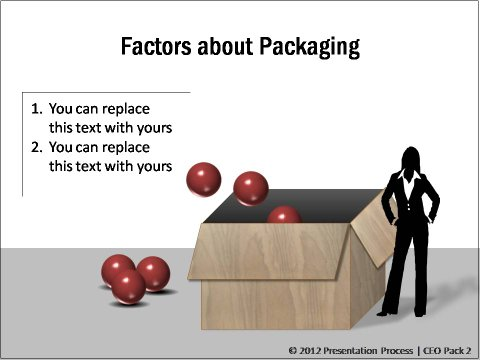 Packaging Marketing Mix from CEO pack 2