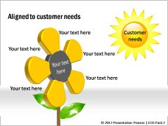 Alignment to customer needs