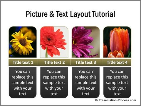 Example of Picture and Text Layout in PowerPoint