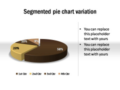Segmented Pie Chart Variation
