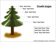Growth Stages and History