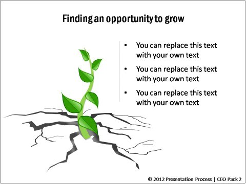 PowerPoint Opportunity for Growth