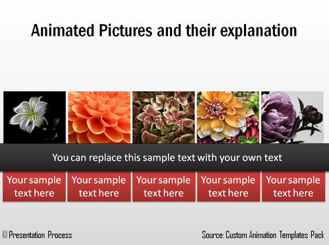 PowerPoint Animated Picture Layout