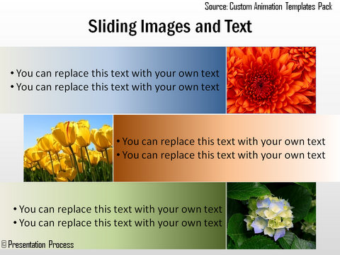 Sliding Picture and  Text animation template