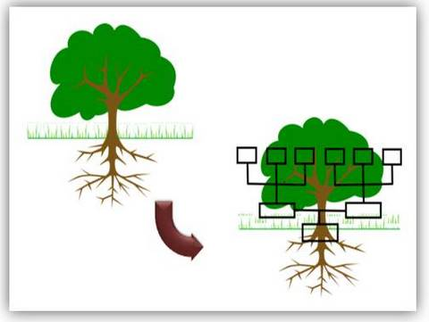 Creative Powerpoint Tree Diagrams - How to make family tree in powerpoint
