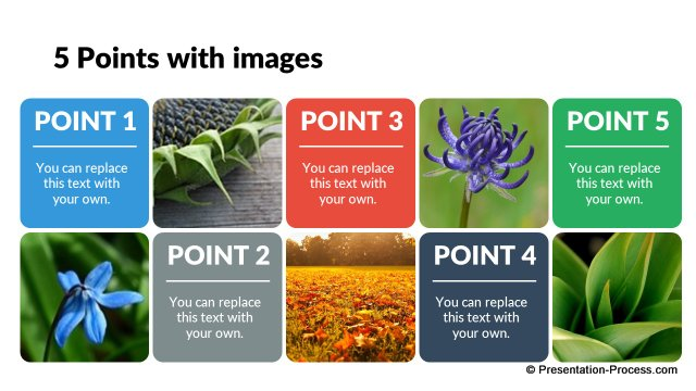 5 Points interspersed with images