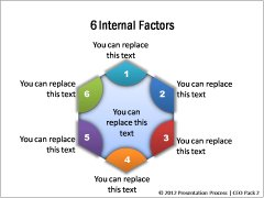 Internal Factors