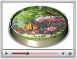 rnav-powerpoint-picture-disc-video