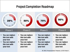 Project Completion Roadmap